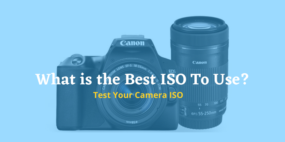 What is the Best ISO To Use?