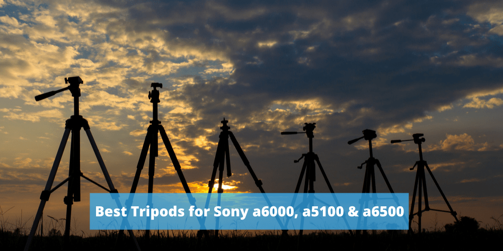 Best Tripods for Sony a6000, a5100 & a6500 Cameras
