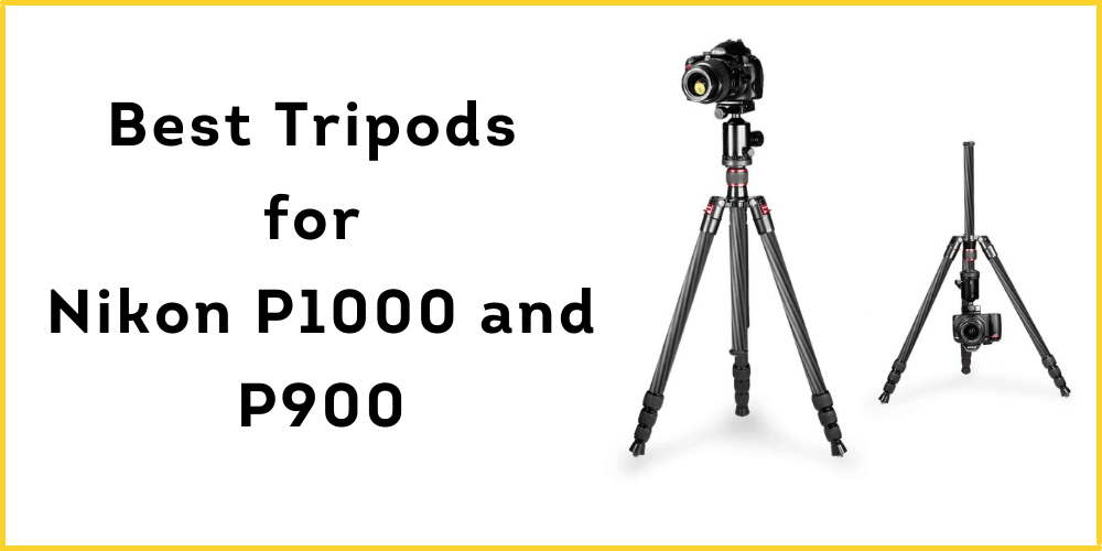 Best Tripods for Nikon P1000 and P900